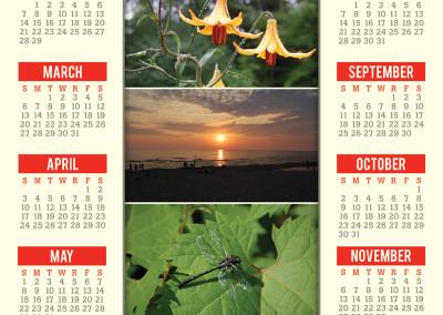 Rehab Tech 2016 Calendar